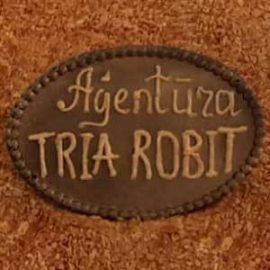 Agency TRIA ROBIT - 30th anniversary